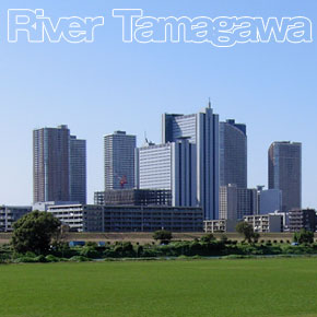 river_tamagawa